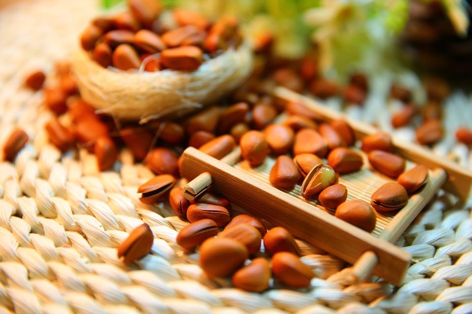 Protein Shakes for Vegans